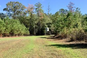 The Forest Home Road Timber & Hunting Investment  in Butler, AL (35 of 35)