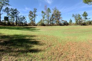 The Forest Home Road Timber & Hunting Investment  - Butler County AL