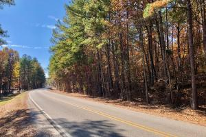 The Longleaf Ridge South Tract - Shelby County, AL
