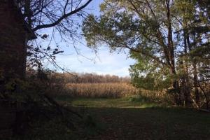11875 560th St, Rush City, MN: St Croix River Valley Residential  Development Land for Sale! - Pine County MN
