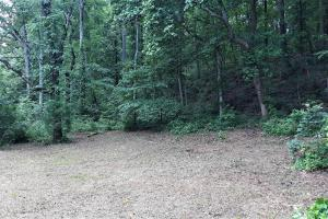 Wooded Home Site Near Watts Bar Lake   - Roane County, TN