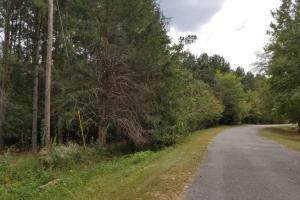 Pretty Branch Road Homesite and Fishing Tract in Sumter, AL (5 of 5)