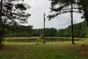 Pretty Branch Road Homesite and Fishing Tract