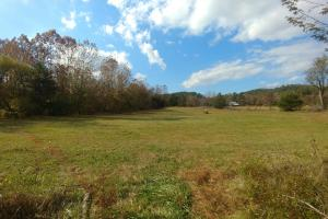 Ouachita Mountain Farm and Hunting Land on the Caddo River in Montgomery, AR (14 of 21)