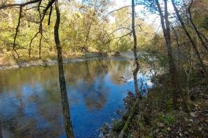 Ouachita Mountain Farm and Hunting Land on the Caddo River in Montgomery, AR (6 of 21)