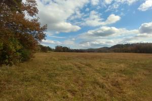 Ouachita Mountain Farm and Hunting Land on the Caddo River in Montgomery, AR (9 of 21)