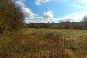 Ouachita Mountain Farm and Hunting Land on the Caddo River in Montgomery, AR (13 of 21)