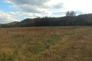 Ouachita Mountain Farm and Hunting Land on the Caddo River in Montgomery, AR (8 of 21)