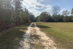 Hunting Land with Home - Bladen County NC