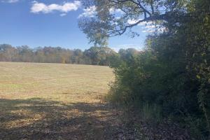 Rocky River Recreation, Hunting & Homesite Acreage - Anson County NC