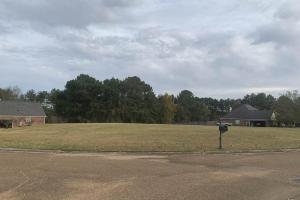 Meadow Ridge Lot - Attala County MS