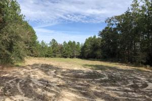 Sandy Ridge Rd Recreational and Hunting Tract - Mobile County, AL