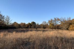Beggs Privacy Hunting - Okmulgee County OK