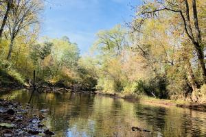 Little River Recreational Land and Homesite