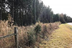 Rocky Branch Road Residential Tract  - Lamar County MS