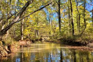 The Brightwater Tract - Shelby County, AL