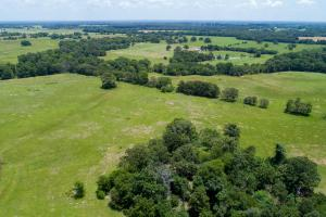 147 ac Grand Saline Ranch, Great mix of pasture and timber,Lake