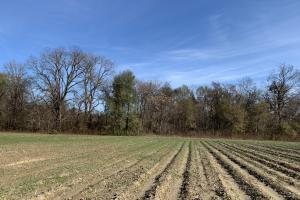 Farmland With Great Hunting Near Buckhorn Management Area