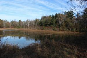 Girard Hunting Retreat - Burke County GA