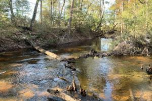 Escatawpa River Hunting and Recreational Tract - Washington County AL