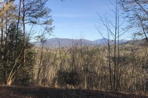 Townsend TN Acreage - Blount County, TN