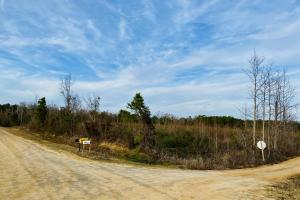Pughes Creek Rural Homesite - Laurens County, GA