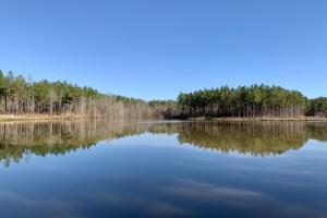 Coonipper Creek Lake Hunting and Timber Tract - Clarke County MS