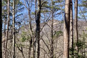 Country Creek Homesite and Recreation Tract - Pickens County, SC
