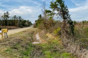 Large Acreage Recreational Property and Homesite Opportunity - Laurens County, GA