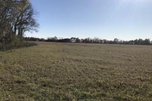 Eatonville Road Residential Property   - Jones County MS