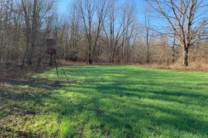food plot with deer feeder (29 of 89)