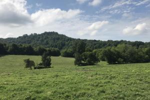 237 Acre Farm in Sweetwater, TN - Monroe County, TN