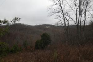 View from Pittman Branch Road (36 of 42)