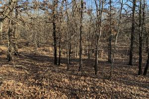 Secluded Hunt, Rec, or Build - Okmulgee County OK