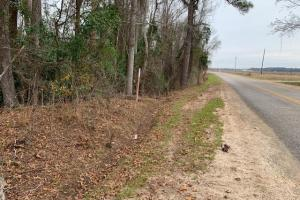 Colony Road Homesites, Hunting and Recreational Tract
