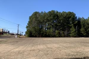 One Acre Commercial Lot - Henderson County, TN