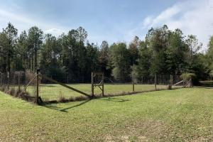 Little Easy Hunting and Timber Retreat in Walton, FL (25 of 39)