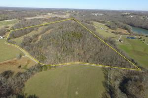 56 acre farm minutes from Edmonton Kentucky - Metcalfe County KY