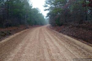 Prime Hunting Land - Attala County MS