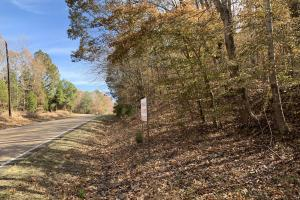 Wooded Hunting/Homesite Tract