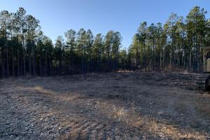 9.5 Acre Homesite in Pines - Henderson County, TN
