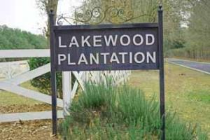 Lakewood Plantation - Clarendon County SC