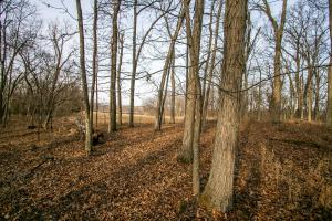 Secluded Build Site & Acreage in Eudora  in Douglas, KS (53 of 54)