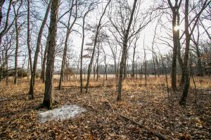 Secluded Build Site & Acreage in Eudora  in Douglas, KS (31 of 54)