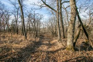 Secluded Build Site & Acreage in Eudora  in Douglas, KS (5 of 54)