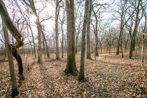 Secluded Build Site & Acreage in Eudora  in Douglas, KS (16 of 54)