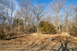 Secluded Build Site & Acreage in Eudora  in Douglas, KS (3 of 54)
