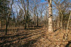 Secluded Build Site & Acreage in Eudora  in Douglas, KS (39 of 54)