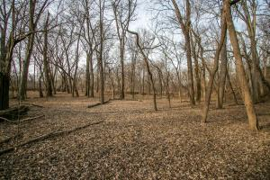Secluded Build Site & Acreage in Eudora  in Douglas, KS (23 of 54)