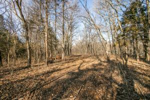 Secluded Build Site & Acreage in Eudora  in Douglas, KS (19 of 54)